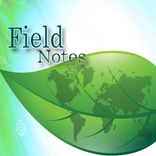 Field Notes Logo